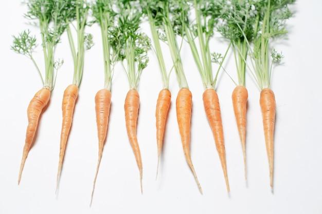 Studio fotografico di piccole carote con cime verdi, sdraiate su uno sfondo bianco.