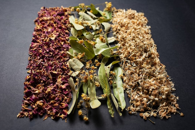 Fotografia in studio di erbe essiccate disposte in linea, sul tavolo scuro.
