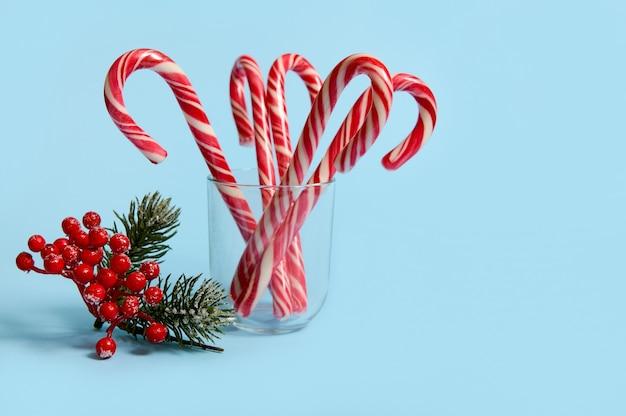 Studio shot di bella composizione semplice minimalista con lecca-lecca di natale in vetro trasparente e ramo innevato di pino con bacche rosse, agrifoglio, su sfondo blu con spazio copia per annuncio