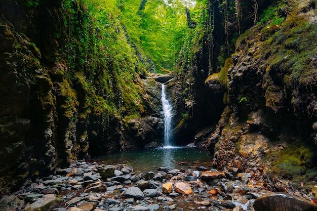 Splendido paesaggio con una cascata di montagna