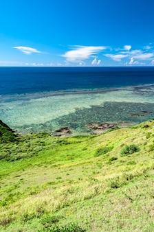 Splendida vista dall'alto di un oceano blu profondo pieno di barriere coralline rocce costiere erba verde