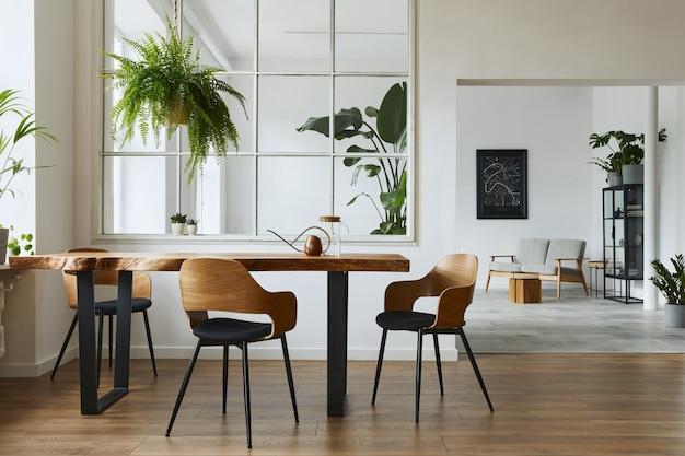Interni eleganti e botanici della sala da pranzo con tavolo in legno di design artigianale, sedie, un sacco di piante, grande finestra, mappa poster e accessori eleganti nell'arredamento moderno della casa. modello.