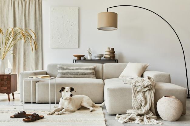 Composizione elegante di un accogliente design d'interni per soggiorno con pittura a struttura finta, cane, divano ad angolo, tavolino da caffè, tessuti e accessori personali. stile classico scandinavo.