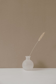 Elegante vaso di fiori con gambo di segale di grano secco su sfondo beige pastello