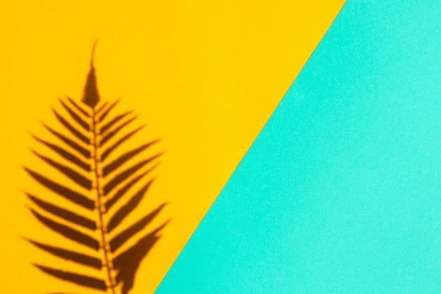 Elegante sfondo astratto estivo ombra di foglia di palma su texture giallo brillante e turchese luce dura vista dall'alto piatta con spazio copia minimalismo