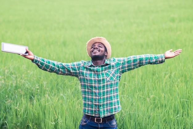 Riuscito agricoltore africano che tiene compressa per la ricerca nel campo del riso biologico. concetto di agricoltura o coltivazione