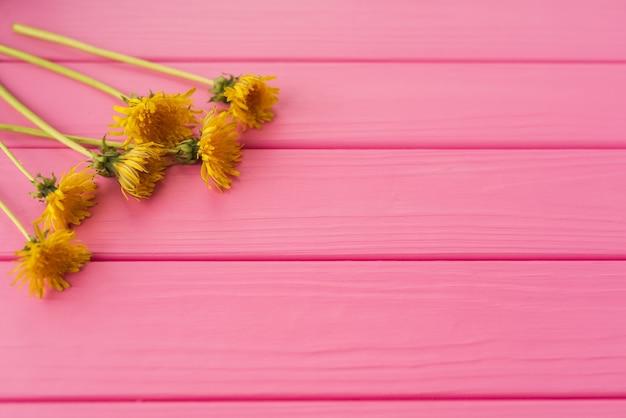 Sommare un'area vuota vuota per l'iscrizione. angoli fiori bordi cornici denti di leone gialli
