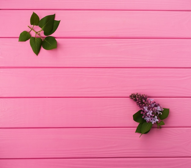 Estate sfondo astratto negli angoli fiori bordi cornici fioritura lilla