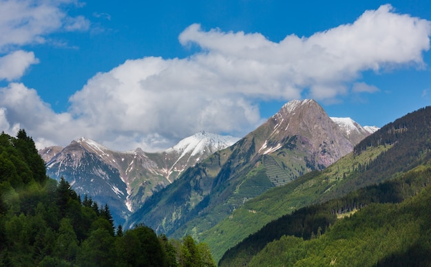 Paesaggio di montagna delle alpi estive con foresta di abeti sul pendio e cime rocciose coperte di neve in lontananza, austria