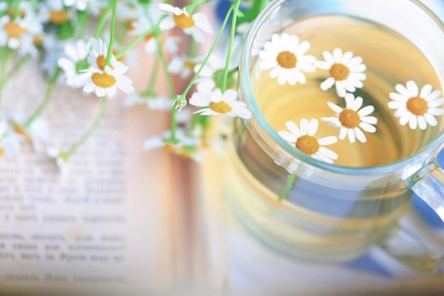 L'estate ha offuscato lo sfondo della camomilla e i raggi di sole primaverili della tenerezza del vecchio libro