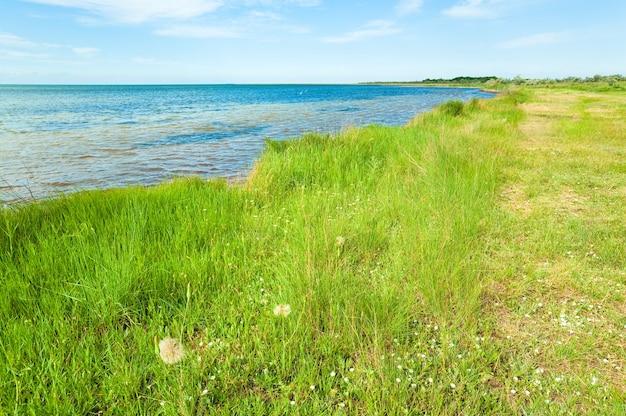 Linea costiera estiva (dintorni della città di skadovsk, crimea, ucraina).
