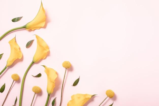 Concetto di estate. priorità bassa di disposizione del confine. flatlay, vista dall'alto. fiori gialli su sfondo rosa, distesi flat