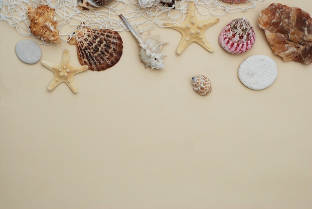 Concetto di estate mix di conchiglie e pietre su sfondo luminoso, copia spazio.