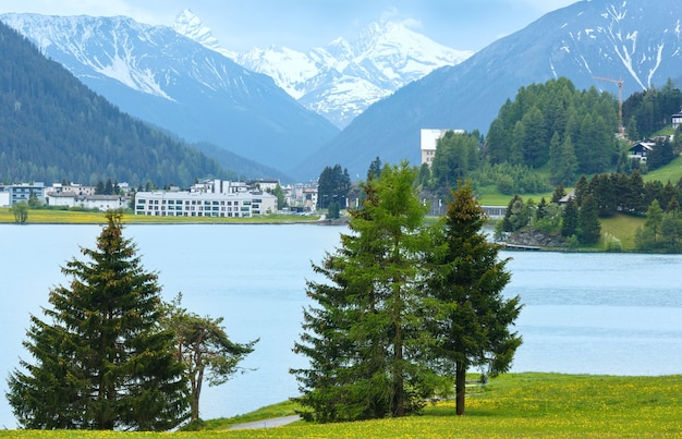 Paesaggio estivo di campagna con lago di davos e prato di tarassaco (svizzera)