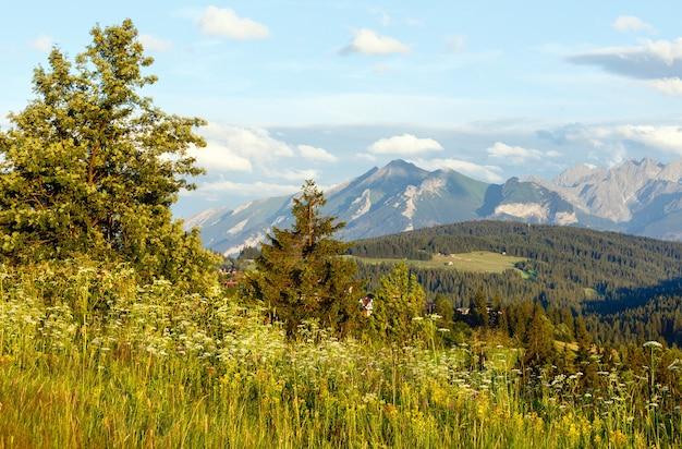 Serata estiva alla periferia del villaggio di montagna con campo in fiore e catena dei tatra alle spalle