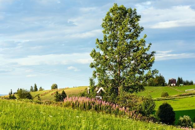 Serata estiva alla periferia del villaggio di montagna con fiori rosa e grande albero