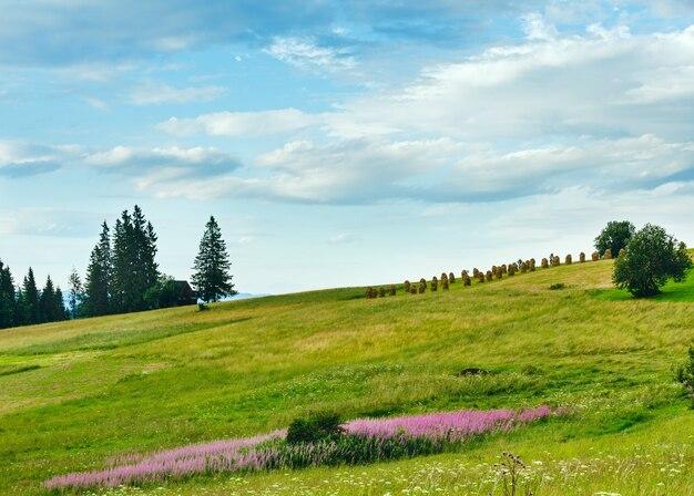 Serata estiva periferia del villaggio di montagna con fiori rosa e bianchi e mucchi di fieno sulla collina