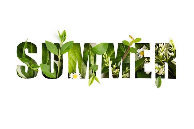 Estate foglie fresche e fiori con carta tagliata estate testo