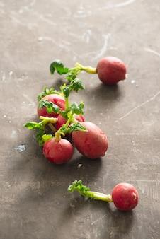 Ravanello rosso raccolto estivo. coltivazione di ortaggi biologici. ravanello succoso fresco crudo del giardino sui bordi scuri pronti da mangiare.