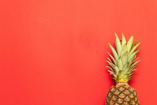 Estate, concetto di vacanza. sfondo di frutta ananas. chiuda in su della struttura tropicale degli ananas.