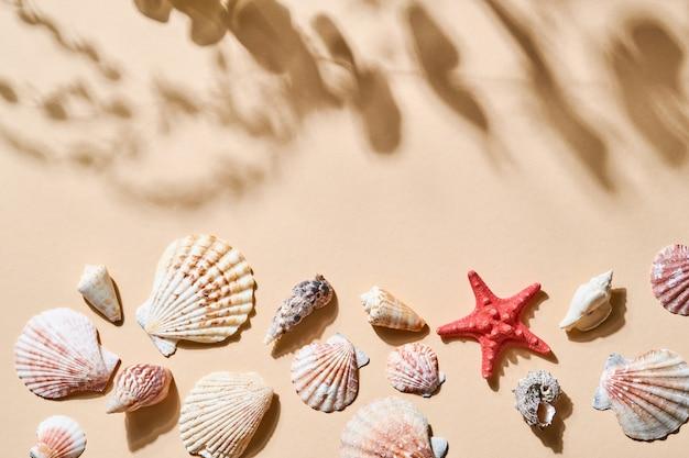Tabella delle vacanze estive. imitazione della sabbia della spiaggia con conchiglia, stella marina, con ombre profonde dalle foglie e dagli alberi. giorno soleggiato. appartamento laico, vista dall'alto copia spazio per il testo.