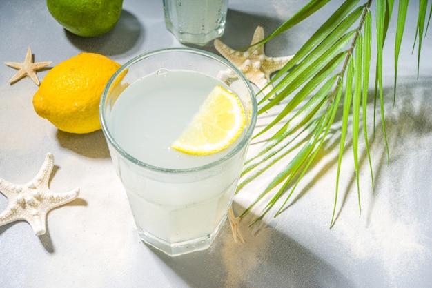 Fondo tropicale di vacanza vacanza estiva con bevande limonata. cocktail mojito con ombre chiare e scure, su uno sfondo tropicale con stelle marine, foglie di palma copia spazio per il testo