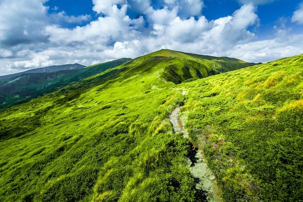 Paesaggio estivo oh sentiero di montagna