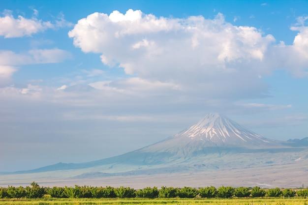 Paesaggio estivo con montagna ararat e campo in primo piano visto dall'armenia