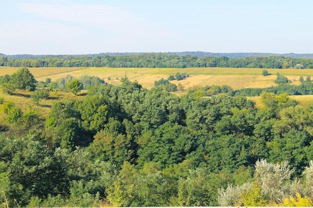 Paesaggio estivo con prati, alberi e colline
