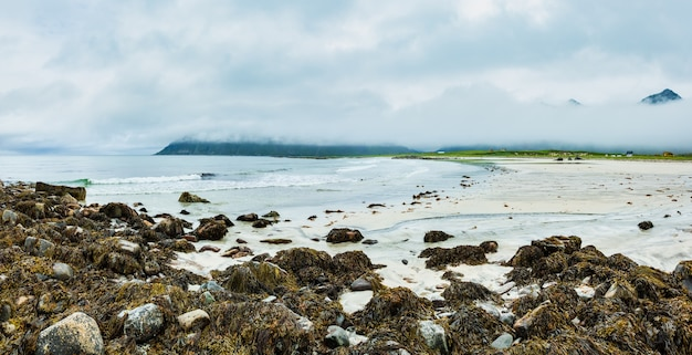 Estate vista spiaggia nebbiosa e nuvolosa con sabbia bianca e alghe sulle pietre a ramberg