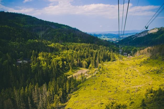 Paesaggio montano estivo con alberi densi e alti verdi, valle luminosa verde chiaro e funivia fino alle montagne. concetto di viaggio e vacanza.