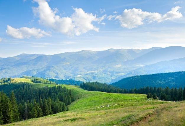 Paesaggio estivo dell'altopiano di montagna con strada sterrata in cima alla collina