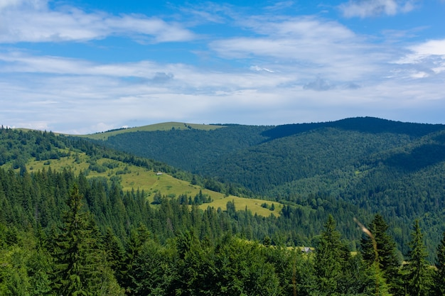Paesaggio estivo della natura delle montagne karpaty.