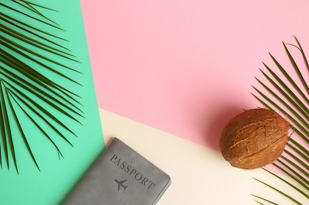 Concetto di estate e vacanza foglie di palma su texture rosa verde e beige con cocco e passaporto