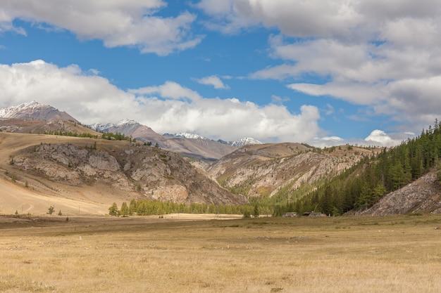 Vista estiva di altai, russia. la repubblica dell'altaj è una delle repubbliche etniche della russia.