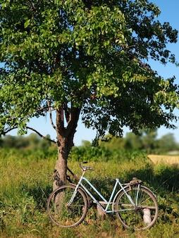 Paesaggio del villaggio estivo. una bici blu è parcheggiata vicino a un albero in un campo.