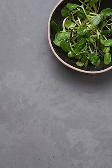 Microgreens di girasole in una ciotola su uno sfondo grigio, verdure germogliate vegetariane, concetto di cibo sano, spazio copia.