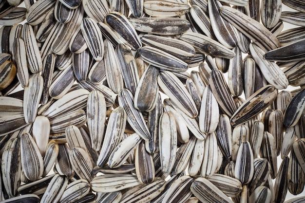 Semi di girasole su uno sfondo bianco.