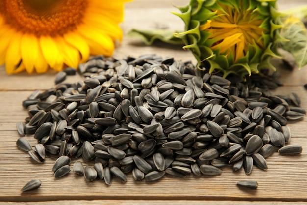 Girasole con semi su sfondo grigio con spazio di copia. vista dall'alto