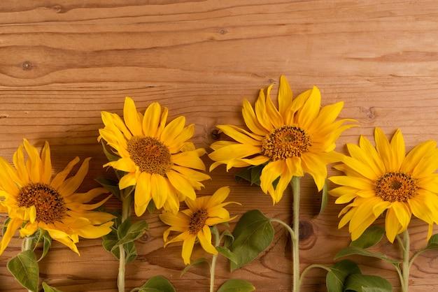 Girasoli su un tavolo rustico in legno fiori estivi giallo brillante con spazio copia