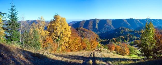 Panorama di montagna autunnale soleggiato con alberi colorati e strada di campagna sul fianco di una montagna.
