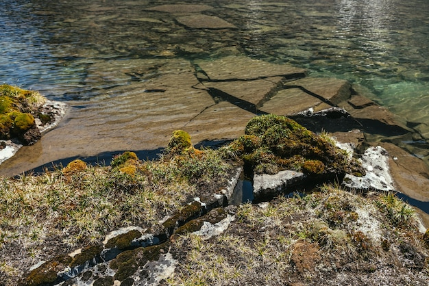 Splendido scenario soleggiato con muschi ed erbe su pietre vicino al bordo dell'acqua del lago di montagna alla luce del sole. paesaggio panoramico con flora di montagna vicino al bordo del lago glaciale. acqua limpida del lago glaciale.