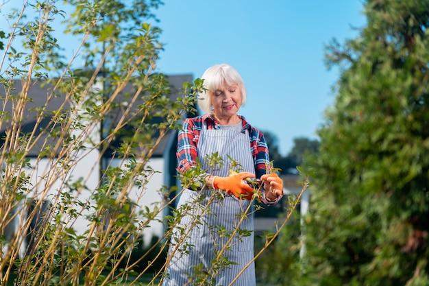 Giorno soleggiato. donna abbastanza piacevole che sorride mentre lavora nel giardino