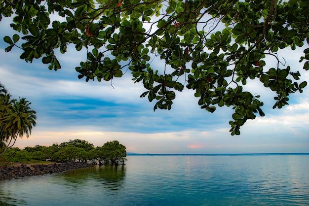 Alba sulla spiaggia di itaparica