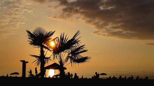 Paesaggio al tramonto. tramonto sulla spiaggia. silhouette di palme sulla spiaggia tropicale al tramonto, estate