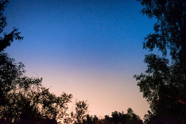 Tramonto e notte cielo blu scuro nella foresta con stelle luminose come sfondo dello spazio