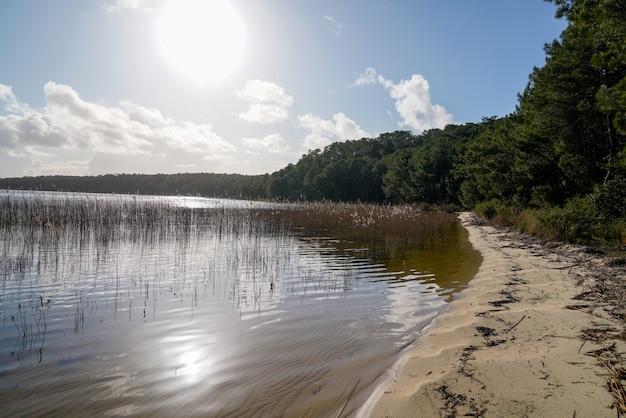 Giorno di estate di tramonto sul lago del hourtin della spiaggia sabbiosa in francia