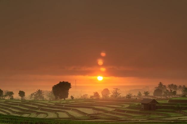 Tramonto con nuvole piove sulle risaie