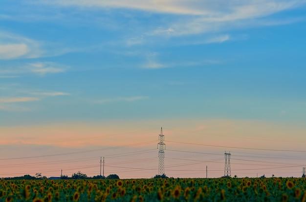 Tramonto con nuvole multicolori nel cielo nel campo estivo