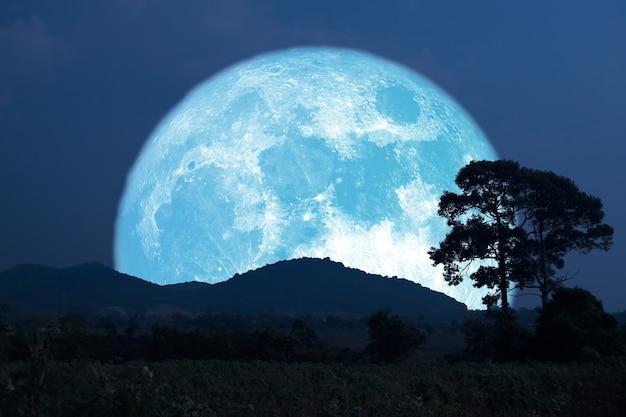 Super mais che pianta la luna blu si alza indietro silhouette albero e montagna sul cielo notturno